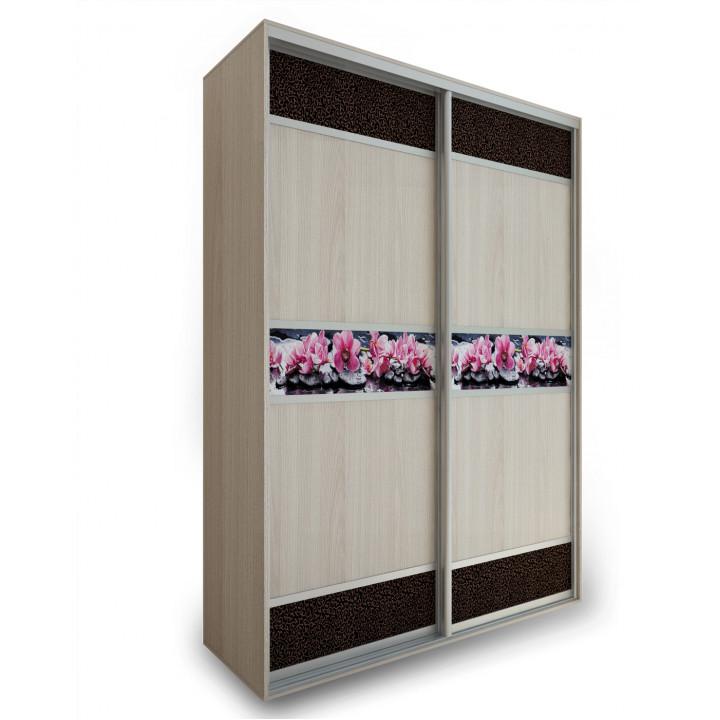 2-х дверный шкаф №16