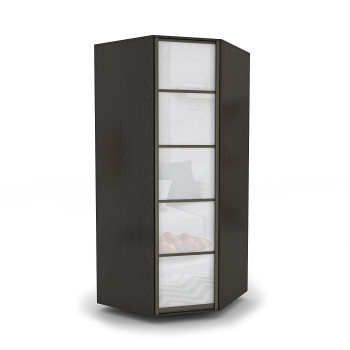 Шкаф угловой с распашной дверью №1